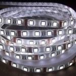 Mervesan - Mervesan/ 14,4 W 3000-3200 K Gün Işığı Led Şerit (3 Chıp - Dış Mekan) (5 Metre) / Mrw-5050-65-Gı